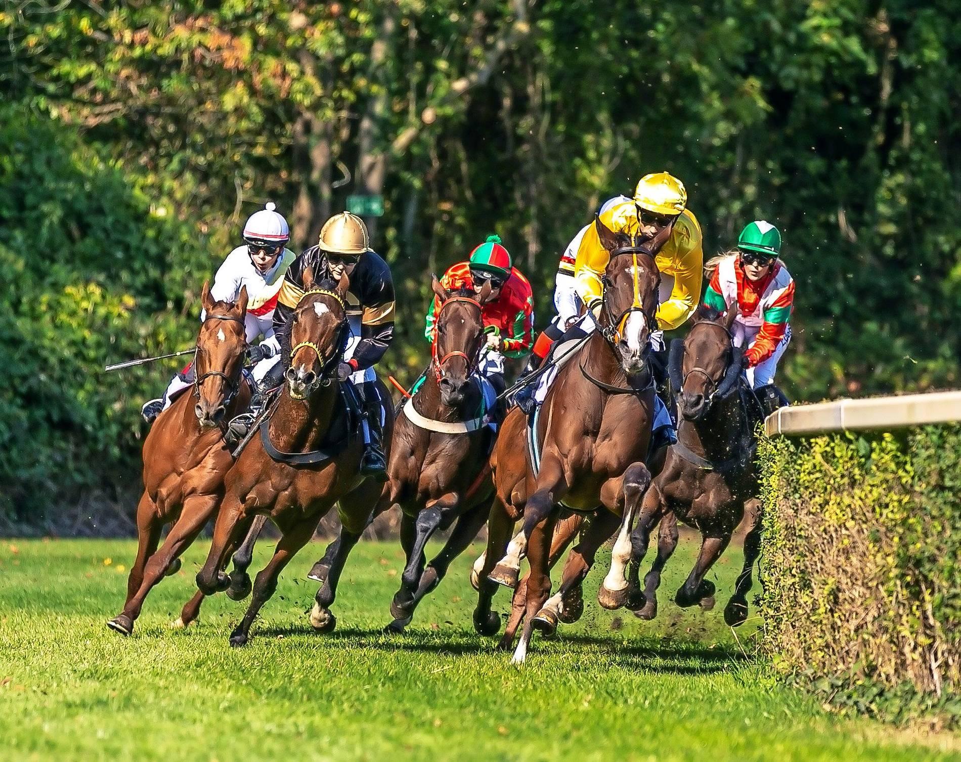 Pferderennen Saarbrücken