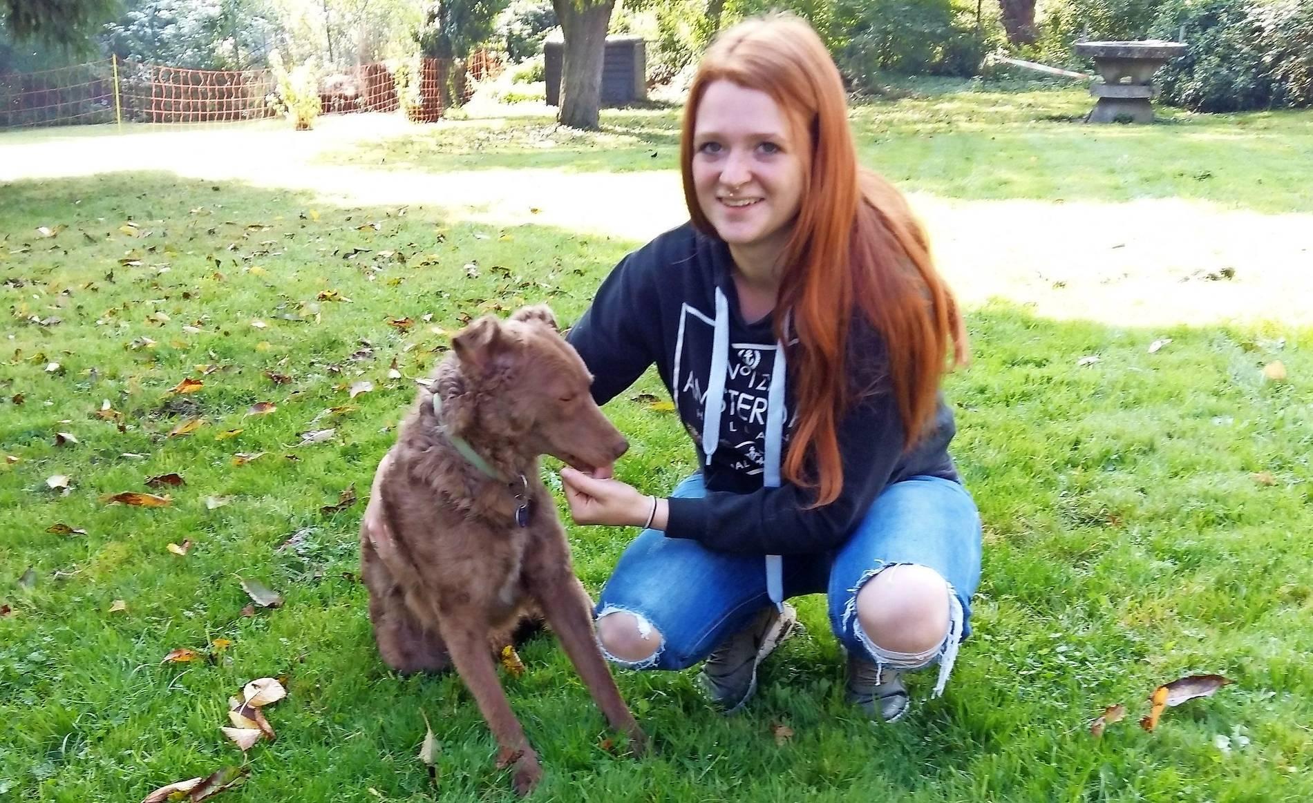 """Tierheimserie """"Wer will mich?: Diese Hunde verdienen ein"""