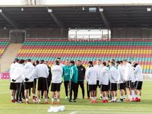 DFB-Training